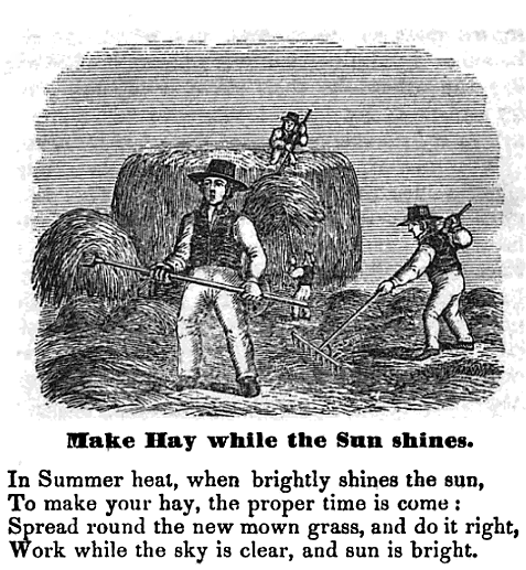 Make Hay while the Sun shines. From The Hand Book of illustrated Proverbs (New York, 1857), by John W. Barber